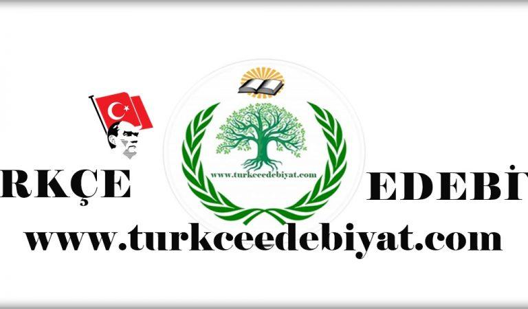 Türkçe İçerik Üreten Site